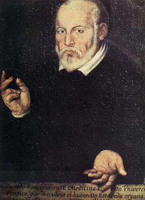 Retrato de Luis Collado.