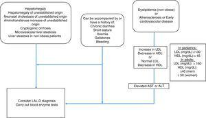 Diagnostic algorithm for lysosomal acid lipase deficiency.