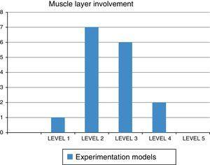 Involvement of the muscle layer.