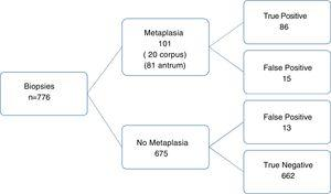 Diagnostic accuracy of NBI endoscopy for histologic intestinal metaplasia (light blue crest sign).
