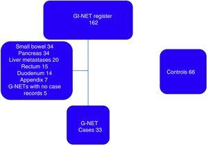 Patients included in the study. G-NETs: gastric neuroendocrine tumors; GI-NET: gastrointestinal neuroendocrine tumor.