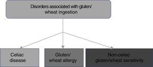 Diagram of the disorders associated with gluten/wheat ingestion.