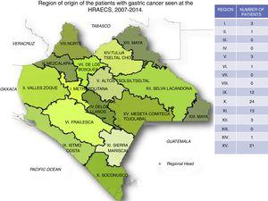 Region of origin of the patients with gastric cancer seen at the HRAECS, 2007-2014.
