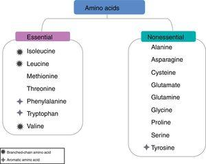 Classification of amino acids.