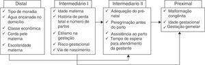 Variáveis inseridas a cada nível durante a modelagem hierarquizada para o óbito neonatal. Adaptado de Lima et al.5