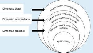 Modelo hierarquizado para avaliação dos fatores de risco para o óbito neonatal, adaptado de Mosley & Chen.3