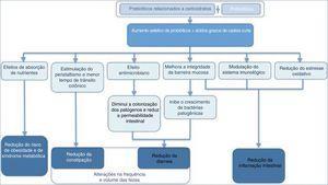 Mecanismo de ação dos prebióticos + probióticos relacionados a carboidratos e seus efeitos na saúde humana. Modificado de: Nath et al.48 e Markowiak et al.49