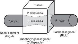 Representation of pressures in the upper airway (Starling Resistor Model). Source: Authors.