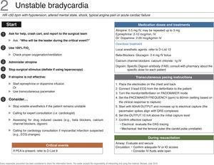 "Checklist for the management of unstable bradycardia. PEA, pulseless electrical activity; FiO2, inspired oxygen fraction; IV, intravenous. Source: Translated and updated with authorization, based on ""OR Crisis Checklists"" available at: www.projectcheck.org/crisis."