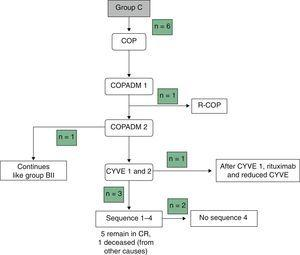Final flowchart of the treatment of group C, modified due to toxicity.