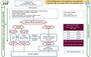 Algorithm for the resuscitation of preterm newborns less than 32 weeks' gestational age.