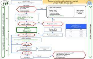 Algorithm for the resuscitation of nonvigorous newborns with meconium-stained amniotic fluid.