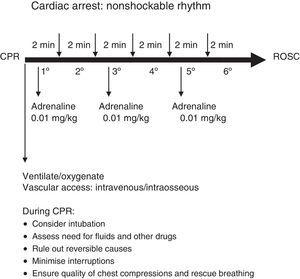 Advanced life support algorithm for nonshockable rhythms.