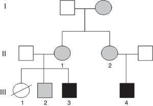 Pedigree chart of the individuals presented in this article. In black: individuals with unbalanced translocation and intellectual disability. In grey: individuals with balanced translocations (III.3=case 2&#59; III.4=case 1).