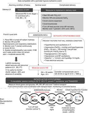 """Protocol for care in the first 6h of life and the """"brain neuroprotection chain."""" aEEG, amplitude-integrated electroencephalogram; BD, base deficit; BP, arterial blood pressure; BS, burst suppression pattern; LV, low voltage pattern; FiO2, fraction of inspired oxygen; FT, flat trace; GA, gestational age; HIE, hypoxic-ischaemic encephalopathy; HR, heart rate; hypoCa++, hypocalcaemia; hypoMg++, hypomagnesemia; RS, resuscitation; NB, newborn; RR, respiratory rate; PaO2, partial pressure of oxygen in arterial blood; PaCO2, partial pressure of carbon dioxide in arterial blood; rScO2: regional cerebral oxygen saturation; SatO2: arterial oxygen saturation; T, body temperature."""