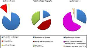 Type of physician managing patients in outpatient visits, foetal echocardiography examinations and inpatient care (percentages).