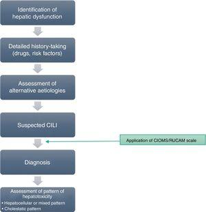 Algorithm for the differential diagnosis of CILI.