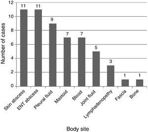 Anatomical sites from which the different microbiological isolates were collected (n=55).