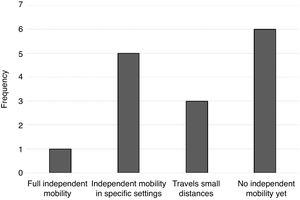 Degree of independent mobility of individuals with STXBP1 syndrome in the sample.