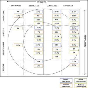 Types of family dynamics based on Olson's circumplex model.