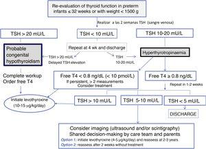 Testing algorithm for the evaluation of thyroid function in preterm neonates.
