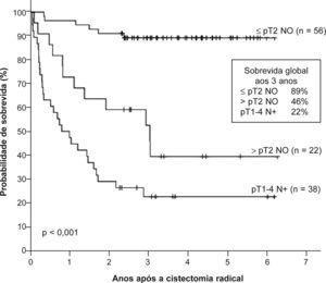 Sobrevida global após a cistectomia radical estratificada por subgrupos patológicos (localizado à bexiga, extravesical e metastização ganglionar).
