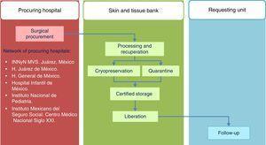 Operational model of the Skin and Tissue Bank of the Instituto Nacional de Rehabilitación. H, hospital; INNyN, Instituto Nacional de Neurología y Neurocirugía; MVS, Manuel Velasco Suarez.