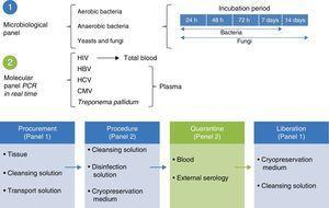 Health certification model for skin and tissues. CMV, cytomegalovirus; PCR, polymerase chain reaction; VIH, human virus of immunodeficiency; VHB, hepatitis B virus; VHC, hepatitis C virus.