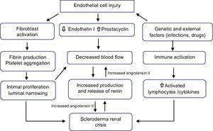 Pathophysiology of scleroderma renal crisis.