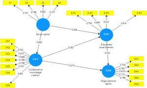 Path coefficient analysis.