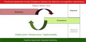 Emotional and cognitive impairments in OCD.