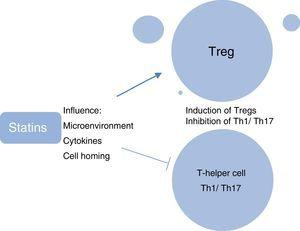Effects of statins on T-cells.