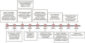 Chronological history of Actinotignum.2–6