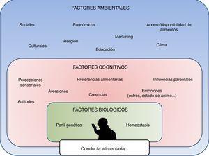 Principales determinantes de la conducta alimentaria, incluyendo factores biológicos internos, factores cognitivos personales y factores ambientales o externos.