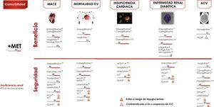 Algoritmo de tratamiento centrado en comorbilidades. Intensificación. Si no se alcanza objetivo individualizado en 3 meses asociar triple terapia con fármaco con mecanismo de acción complementario y beneficio/seguridad CV. Valorar empleo de insulinoterapia basal (ver algoritmo). ACV; accidente cerebrovascular; CV: cardiovascular; DP: duración prolongada; FG: filtrado glomerular; GLIN: repaglinida; MACE: eventos CV mayores; PIO: pioglitazona; SU: sulfonilurea. *Ajuste de dosis en IR salvo linagliptina. # No requiere ajuste de dosis en ERC. † Evidencia basada en estudios observacionales. (1) Aprobado por la European Medicines Agency. (2) Dulaglutida, dapagliflozina y linagliptina no han finalizado ensayo de seguridad CV. Vildagliptina no tiene ensayo de seguridad CV.
