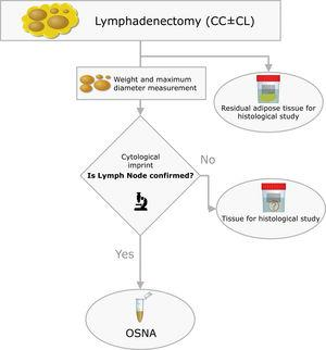 Pathological processing of the lymph nodes (CC: Central Compartment; LC: Lateral Compartment; OSNA: One-Step Nucleic Acid Amplification).