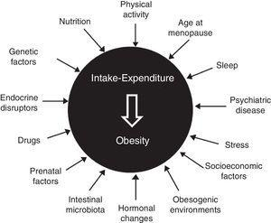 Obesity as multifactorial disease.