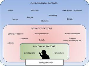 Principal determinants of eating behavior, including internal biological factors, personal cognitive factors, and environmental or external factors.