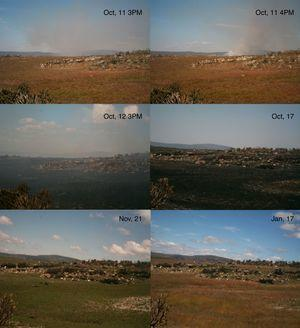 Sequence of photographs showing timing of burn and the post-fire vegetation recovery process in a heterogeneous landscape, Serra do Cipó, Minas Gerais, Southeasten Brazil.