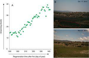 Post-fire vegetation recovery scheme of a wet grassland habitat at Serra do Cipó, south of Espinhaço Mountain Range, Minas Gerais State, Brazil. (A) Graphic representing a camera derived vegetation index (Excess Green) extracted from a set of photographs showing the greening curve after a fire event. (B) First day after fire event as represented by the day of year 291; (C) vegetation recovered after 34 days; Green dots represent Green daily value of the 90th percentile of the Excess green index (90th ExcG) from digital images taken by a time lapse camera every hour, from 6:00 h to 18:00 h.