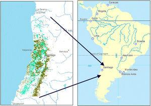 Distribution of espinal (light green) and sclerophyllous forest (dark green) within the study region (IV Region (Coquimbo) through the VII Region (Maule)), corresponding to central Chile, shown in the South American context. (For interpretation of the references to color in this figure legend, the reader is referred to the web version of this article.)