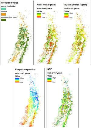 Distribution of the components of the index of ecological condition of the woodlands, each summed for all years (2000–2001, 2003–2006, 2008–2013) as an indication of their spatial patterning over the period in question. Top left, the three woodland habitat types for reference.