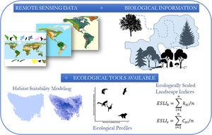 The conceptual model of the proposed framework. We use remote sensing data such as the map of the range of the species, land use and altitude maps. With biological information, such as maximum dispersion distance, daily movement capacity, home range size, habitat types and altitude of occurrence of the species, we construct habitat suitability maps and calculated landscapes indices considering the biological features and the landscape structure.