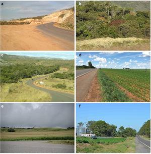 """Brazilian roadsides along paved highways are the scenario of many environmental problems. (a) Area along MG-10 left alone for many years and later ill-restored with noxious weeds by the Department of Roads of the state of Minas Gerais (DER-MG). (b) Spread of ruderal and invasive species into pristine vegetation from highway MG-10. (c) """"Restoration"""" of highway MG-735 roadside in Minas Gerais (DER-MG) with exotic African grasses and other species. (d) Use of roadside along highway GO-118 (Brasilia-Alto Paraíso) to expand the plantations of soybean and bean. (e) Plantation of corn to the very edge of the RS-472 in Rio Grande do Sul state. (f) Plantation of soybean and plantation/invasion of pine trees along BR 290 in the Pampa, Rio Grande do Sul state."""