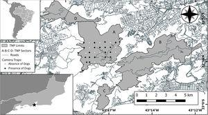 Study area (Tijuca National Park) with Brazil and Rio de Janeiro insetted (TNP is represented with a black star into the Rio de Janeiro inset). Park area is showed in gray as well as his sectors: (A) Floresta da Tijuca (where the study was carried out), (B) Serra da Carioca, (C) Pedra Bonita/Pedra da Gávea and (D) Pretos-Forros/Covanca. Within the Floresta da Tijuca sector, black dots denotes camera trap stations that detected domestic dog presence, white dots denotes camera trap stations that did not detect domestic dogs. Gray lines are paved roads located inside and around the Park.