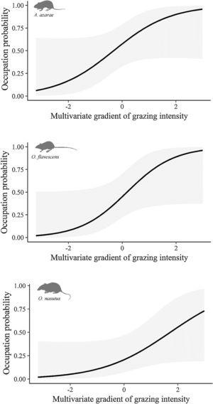 Occupation probability as a function of the gradient of grazing intensity. Values of the multivariate gradient of grazing intensity were extracted from Axis 1 of the Principal Coordinate Analysis (Fig. S1.2). The lowest negative values indicate the highest grazing intensities, whereas the highest positive values indicate the absence of grazing.