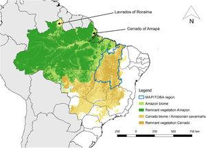 Map of Brazil showing the Amazon and Cerrado biomes with remnant vegetation highlighted, the major Amazonian savannahs, and the Brazilian states in which they occur. The biome limits are based on the Brazilian Institute of Geography and Statistics (IBGE) vegetation cover map (IBGE, 2004), remnant vegetation is based on LAPIG (2019).