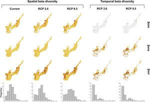 Climate change acting on spatial and temporal patterns of beta diversity. Spatial beta diversity of primates in the current, the optimistic (RCP 2.6) and the pessimistic (RCP 8.5) scenarios of climate change, and temporal beta diversity reflecting the change in primates species composition between current-optimistic (RCP 2.6) and current-pessimistic (RCP 8.5) scenarios of climate changes in the Brazilian Atlantic Forest. Beta diversity (βsor) is fractioned in turnover (βsim) and nestedness (βsne). Histograms represent the frequency values of βsor for each scenario.