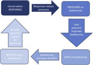 Relationship between PSRB indicators. Adapted from Sparks et al. (2011).