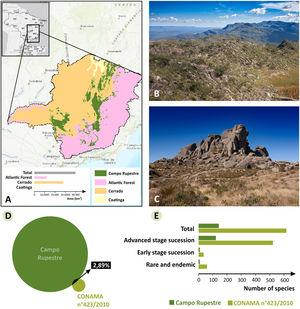 A. Geographic distribution of campo rupestre (sensuSilveira et al., 2016) and the other biomes (IBGE 2018) in Minas Gerais; B. Typical landscape of campo rupestre at Serra do Cipó and campo de altitude (C) at the Parque Nacional do Itatiaia; D. Overlap of plant species between campo rupestre and the list of indicator species from the Resolution CONAMA 423/2010. Circle size refers to number of species; E. Total number of species in the Resolution CONAMA and total number of species in the Resolution and that occurs in campo rupestre. Photos in B and C by Augusto M. Gomes.